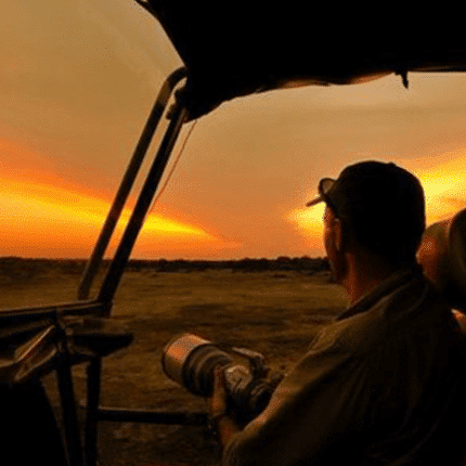 night yala safari